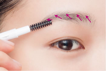 Smoothen the eyebrow hairs with a brow brush