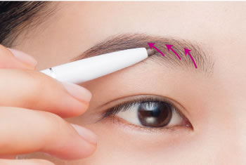 Lightly apply makeup to the brow head
