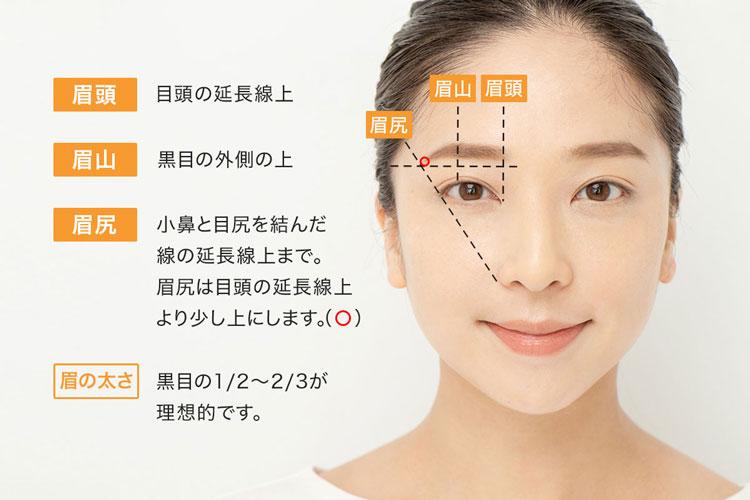 【眉頭】目頭の延長線上【眉山】黒目の外側の上【眉尻】小鼻と目じり結んだ線の延長線上まで。眉尻は目頭の延長線上より少し上にします。【眉の太さ】黒目の1/2~2/3が理想的です。